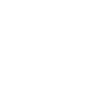 SysEleven Sommerfeier cc-solutions Logo weiß